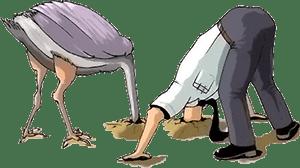 Конфликт в организации: подходы и тактики - страус и человек